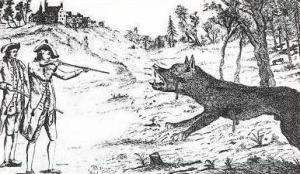 Antoine killing the Wolf of Chazes, 18th-century engraving.