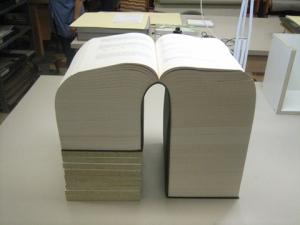 thickassbook