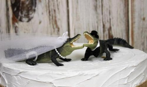 Gator Wedding